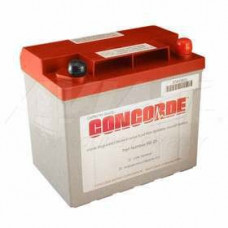 Aircraft Battery, 12V, 22AH, Recombinant Gas