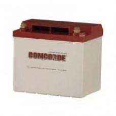 Aircraft Battery, 12V 24AH, Recombinant Gas (Extra Cranking)