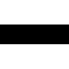 Iris EFIS 80 (Slave Instrument)